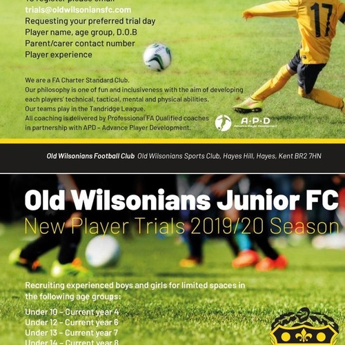 Old Wilsonians Junior FC New player trials 2019/2020